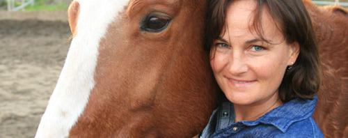 Alo Horses