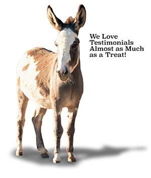 We Love Testimonials
